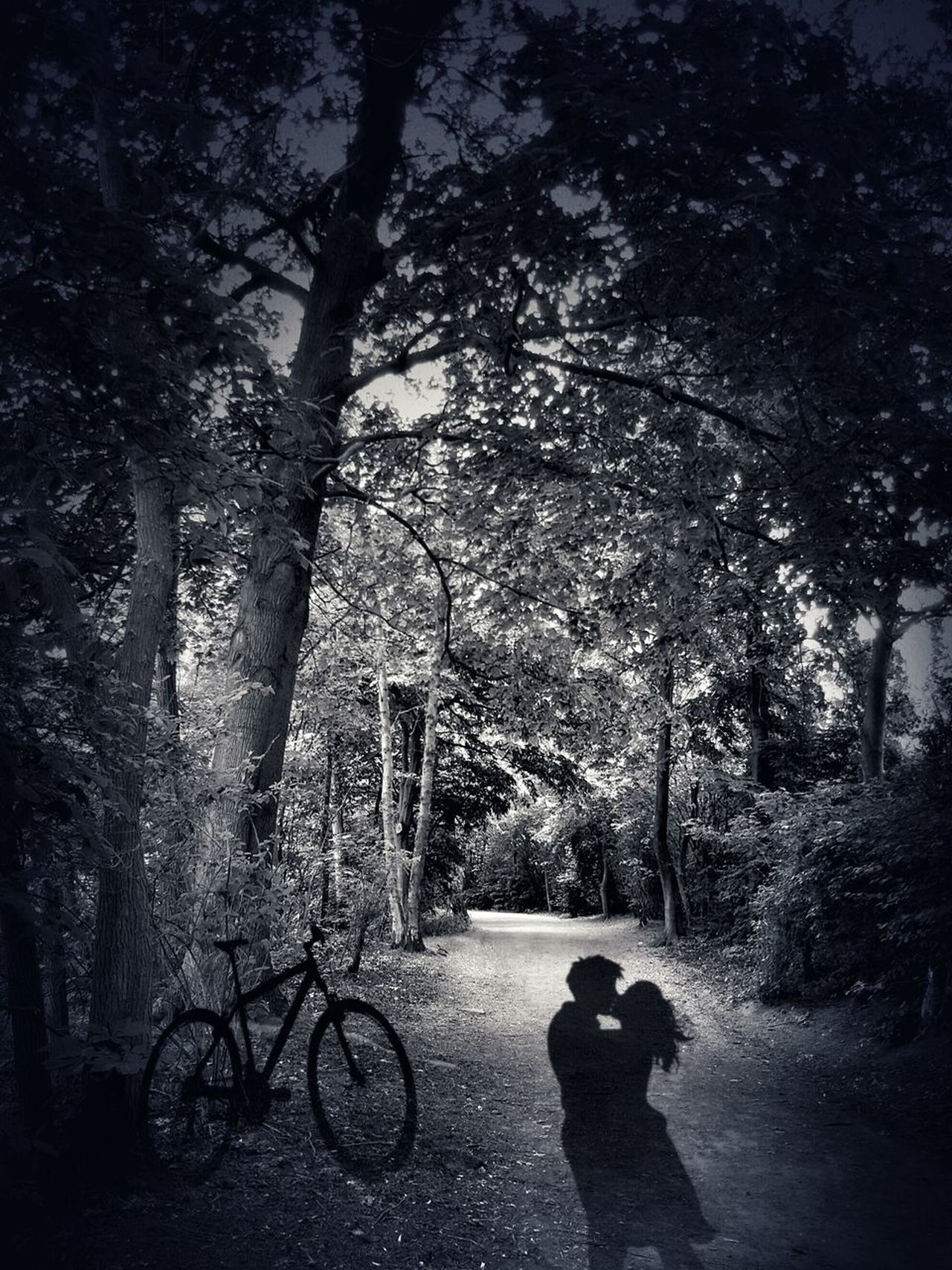 Let me tell you a little story.... 😉Live For The Story Summerlove Forbidden Love Bicycle Real People Tree Two People Silhouette Shadow Outdoors Sky People Nature Photography The Great Outdoors - 2017 EyeEm Awards EyeEmNewHere The Photojournalist - 2017 EyeEm Awards Place Of Heart Story Storytelling Blackandwhite Blackandwhite Photography EyeEm Best Edits The Portraitist - 2017 EyeEm Awards No Color Love The Street Photographer - 2017 EyeEm Awards Let's Go. Together.