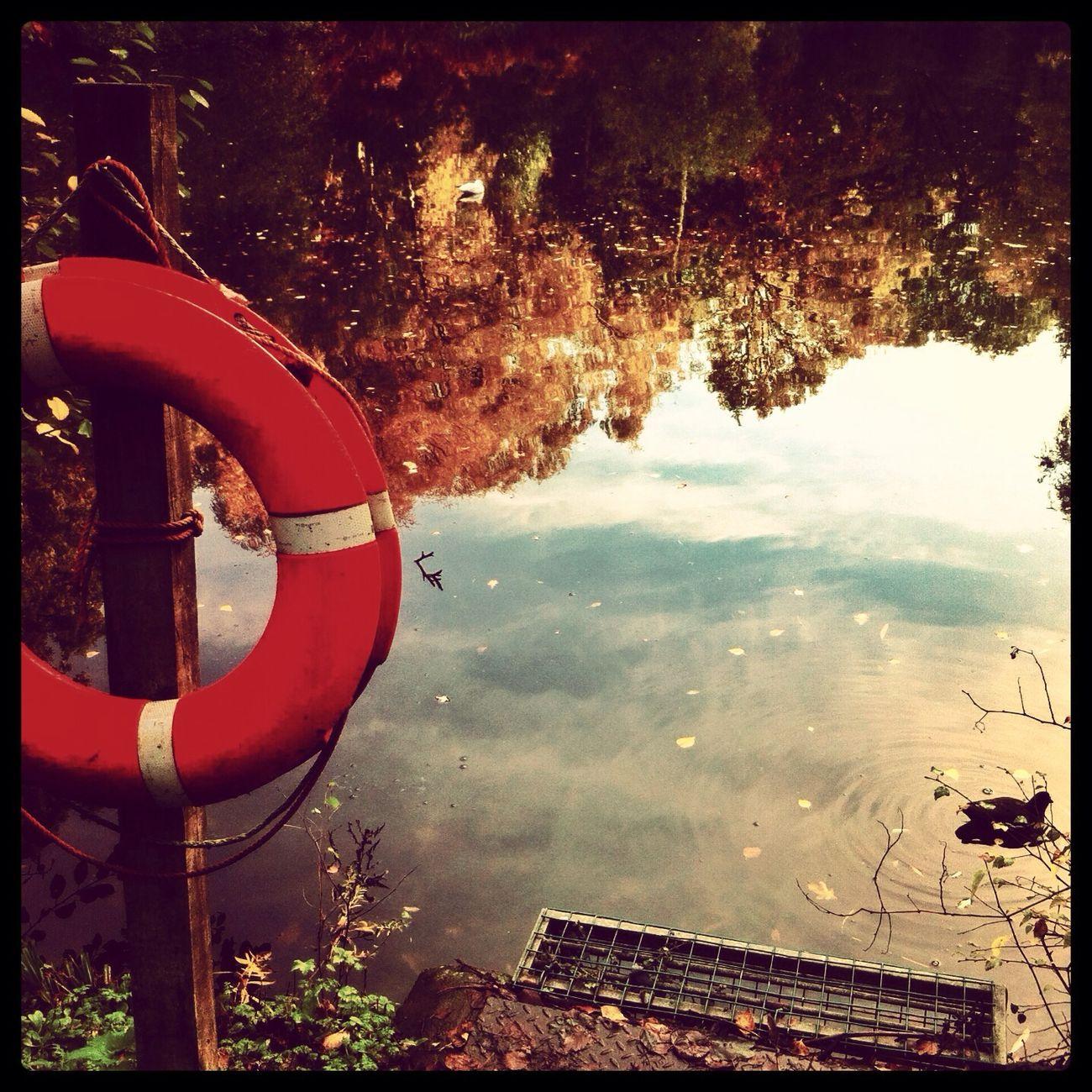Hampstead Heath Autumn Lakes  Hello World