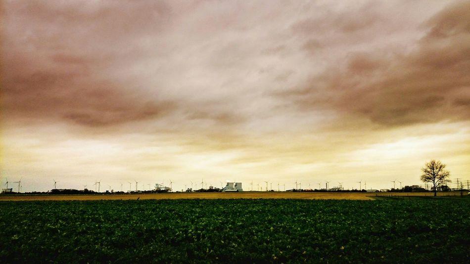 Pink Sky over Dutch Landscape. Landscape_photography, EyeEm Best Edits, Smooth Day in DECEMBER2015