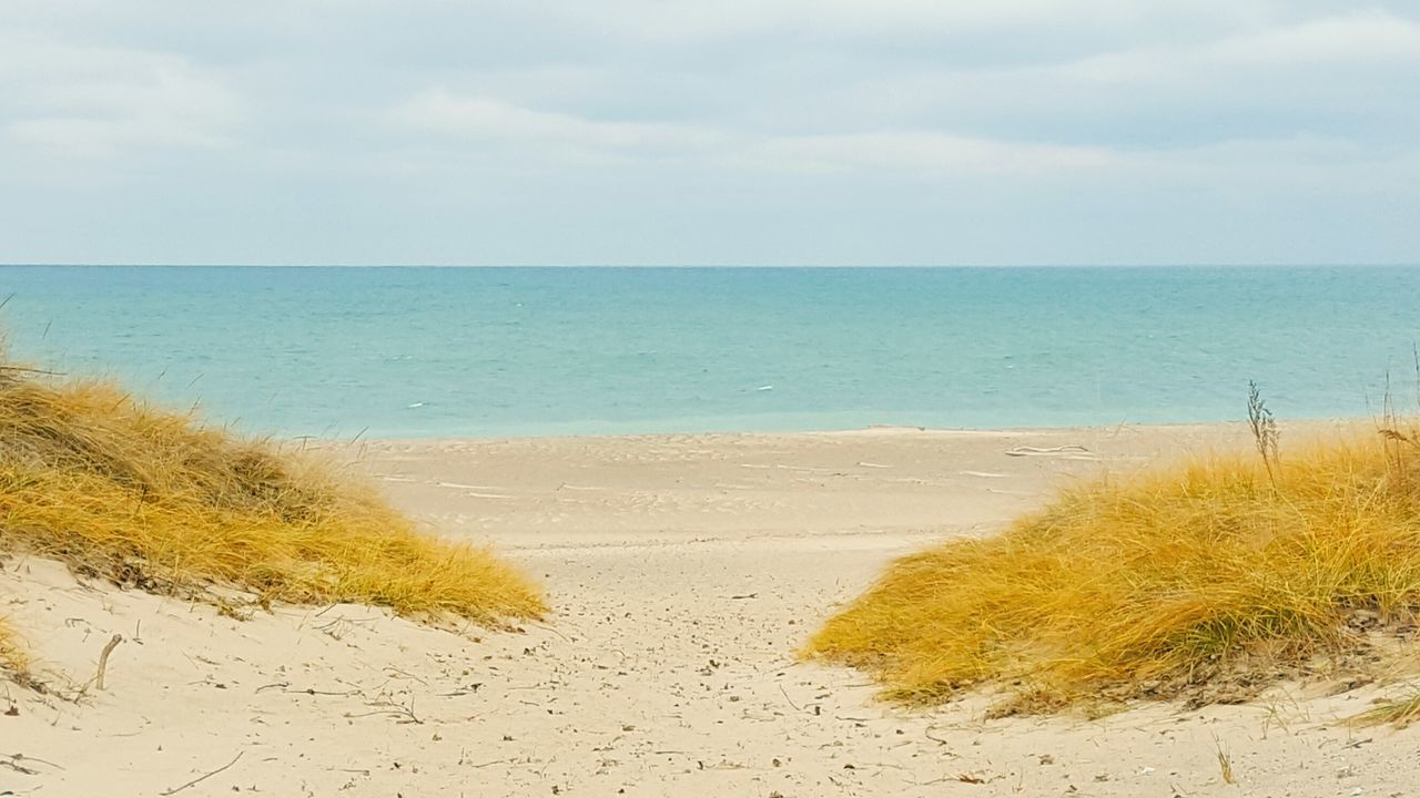 sea, beach, horizon over water, sand, nature, water, tranquil scene, beauty in nature, scenics, tranquility, shore, sky, day, outdoors, marram grass, no people, sand dune