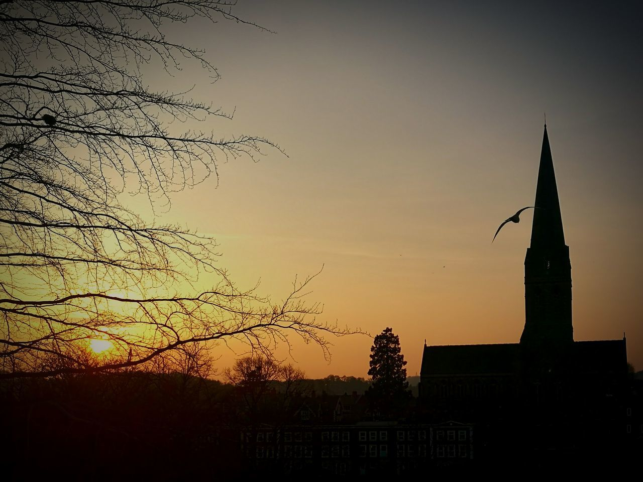 sunset, silhouette, architecture, built structure, orange color, building exterior, sky, tree, no people, bare tree, outdoors, nature, beauty in nature, city, day