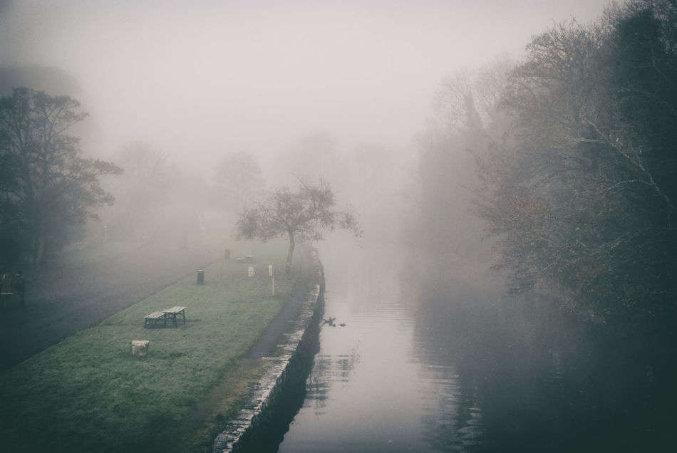 Fog #Ireland #river Beauty In Nature Fog Landscape Nature Rainy Season Tranquility Water