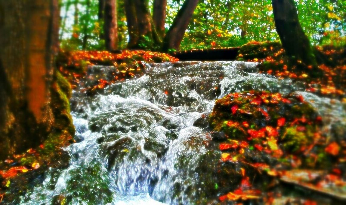 Waterfall Autumn Colors Hdr_Collection Landscape_Collection
