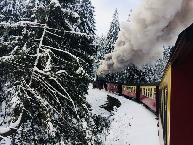 Winter Snow Cold Temperature Smoke - Physical Structure Tree Steam Train Day Rail Transportation Nature Transportation Steam Land Vehicle Architecture Outdoors Built Structure No People Sky Locomotive