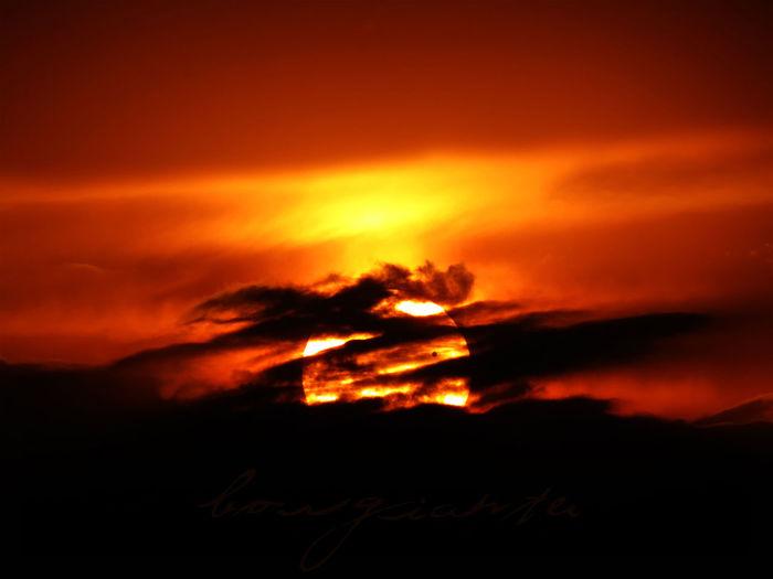 2177 Beauty In Nature Borgiante Conjunciondevenus Cuautitlan Cuautitlanmexico Dramatic Sky Mexico Orange Color Sky Sun Sunset Tranquility Venus Venusconjuction