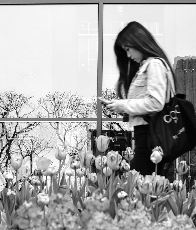 The Moment - 2015 EyeEm Awards Streets Of Seoul Urban Lifestyle People With Smartphones Spring Springtime Fashion Forever My Smartphone Life The Photojournalist - 2015 EyeEm Awards The Fashionist - 2015 EyeEm Awards Spring Flowers Tulips Window Reflection Blurry Women Who Inspire You Human Meets Technology