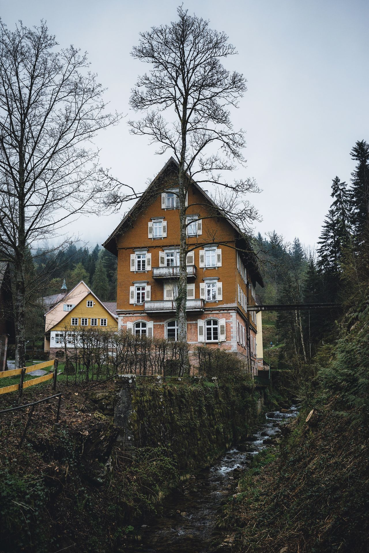 Black Forest Germany Tree Architecture Building Exterior Built Structure Sky No People House Outdoors Nature Bare Tree Day