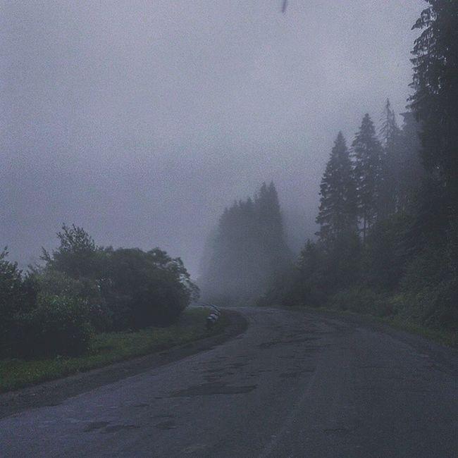 Один з великих плюсів їзди на світанку, це повна відсутність машин і чисте гірське повітря карпатськідороги
