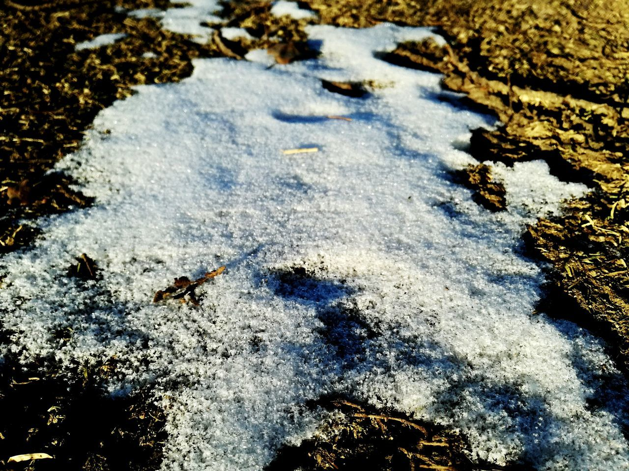 High Angle View Beach Nature Sand Day Sunlight Outdoors Animal Track Paw Print No People Close-up Beauty In Nature Winter Space Shadow Sun Rays Shiny Highlights Grassfield Sunlight Earth Colours Earth Upclose Iceland Illuminated Nature