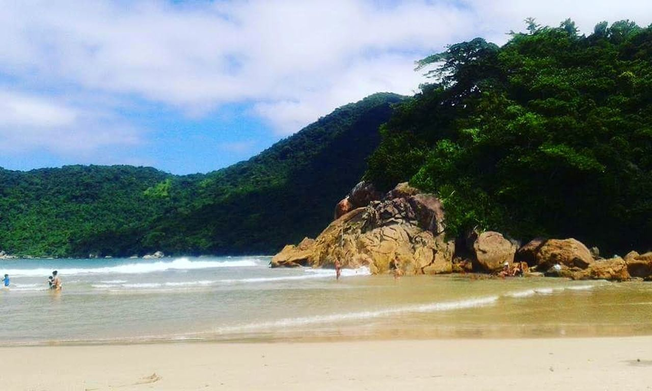 beach, water, nature, sea, beauty in nature, sand, scenics, rock - object, sky, tranquility, cloud - sky, day, tranquil scene, outdoors, tree, no people, mountain, animal themes, mammal