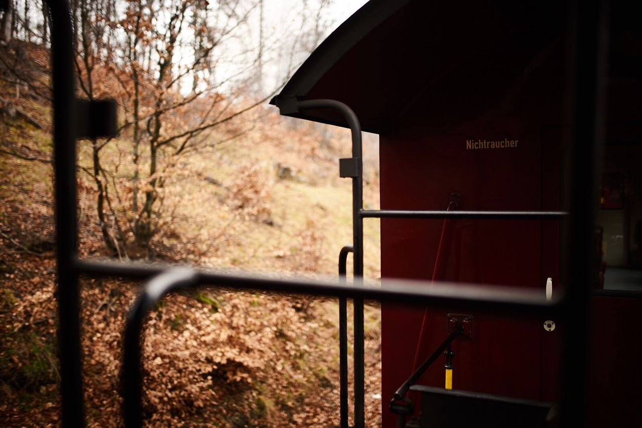 Nichtraucher. Mpassin Tree No People Nature Outdoors Day Close-up Sky Brockenbahn