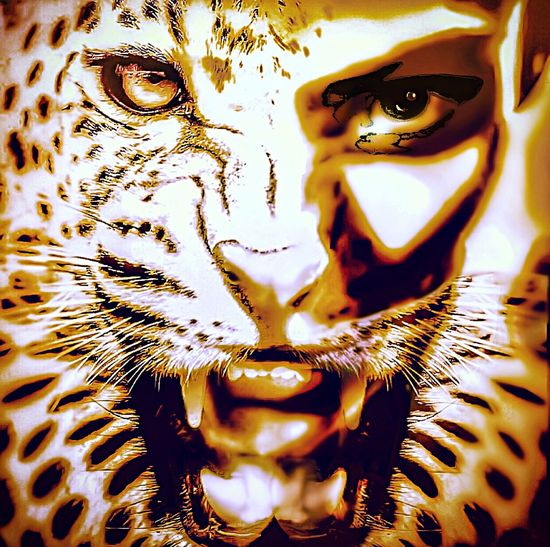 Don't Bite The Hand That Feeds You Ferocity Protective Mother Angry Rage Digital Art Rebelpunk Selfportrait Half Face Feline
