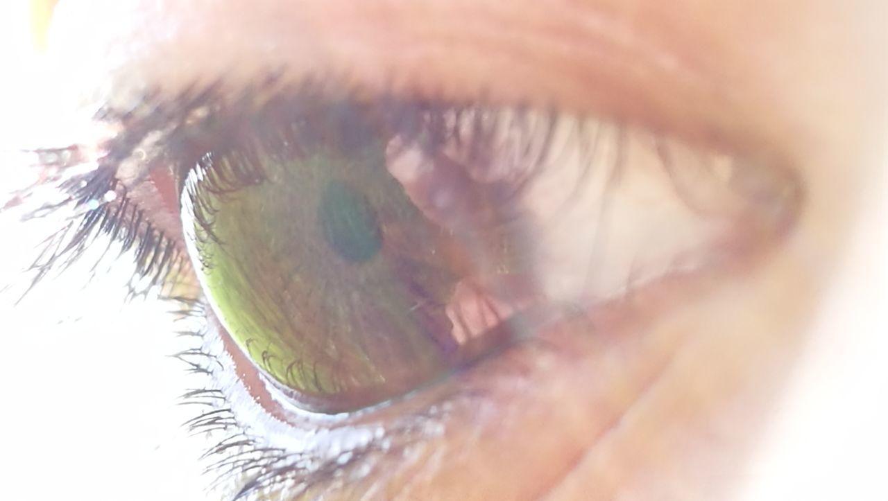 eyelash, sensory perception, human eye, eyesight, human body part, eyeball, one person, macro, close-up, real people, vision, day, human skin, iris - eye, outdoors, people