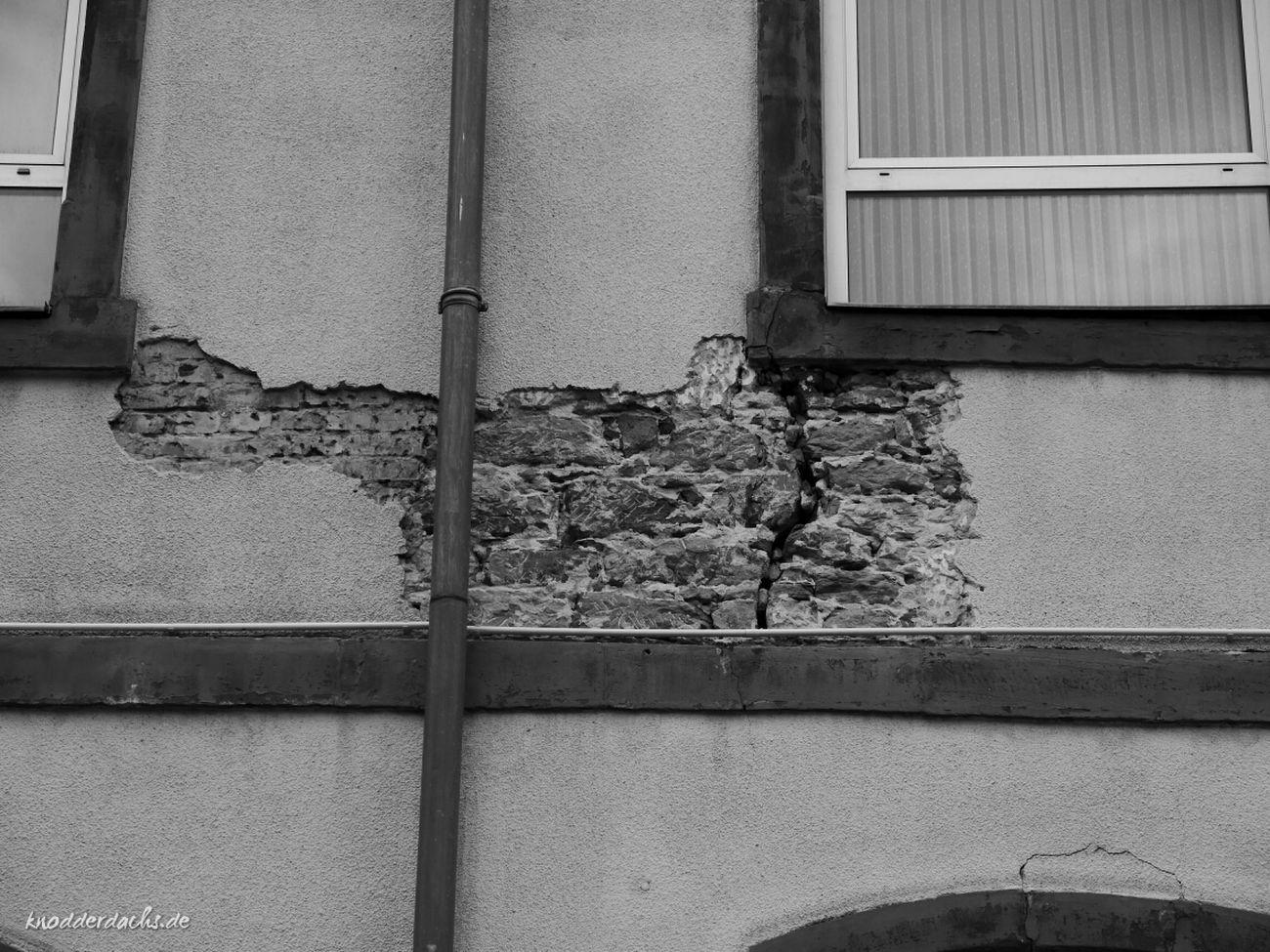 Verfall an der alten Grundschule in Homburg.