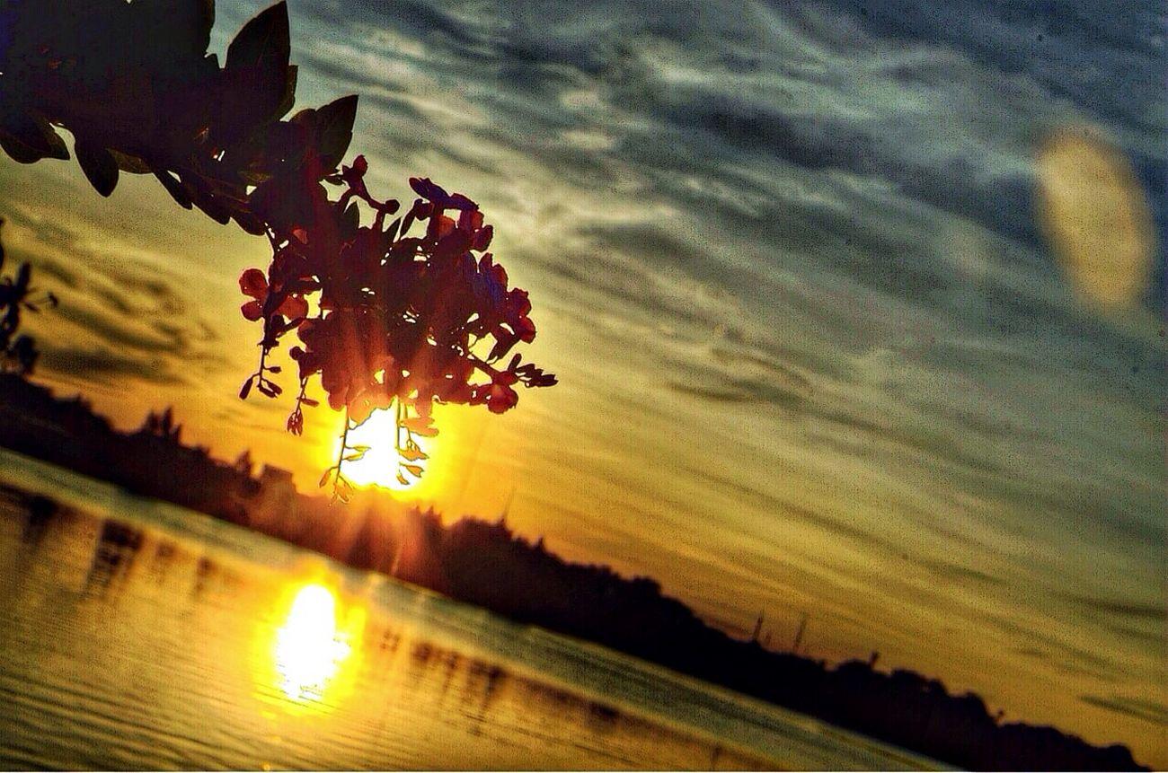 How about your sunset ?????? EyeEm Best Shots Enjoying Life Sunset #sun #clouds #skylovers #sky #nature #beautifulinnature #naturalbeauty #photography #landscape Hello World
