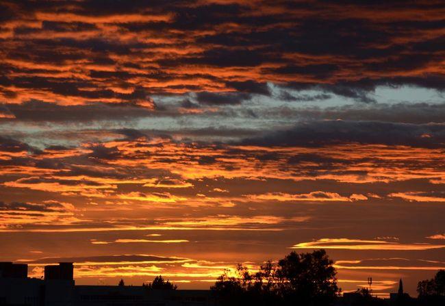 Golden Sky Sky Beautiful Oujda Morocco