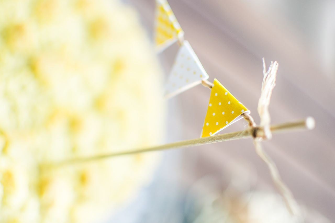 Beautiful stock photos of easter, Art And Craft, Bunting, Celebration, Creativity