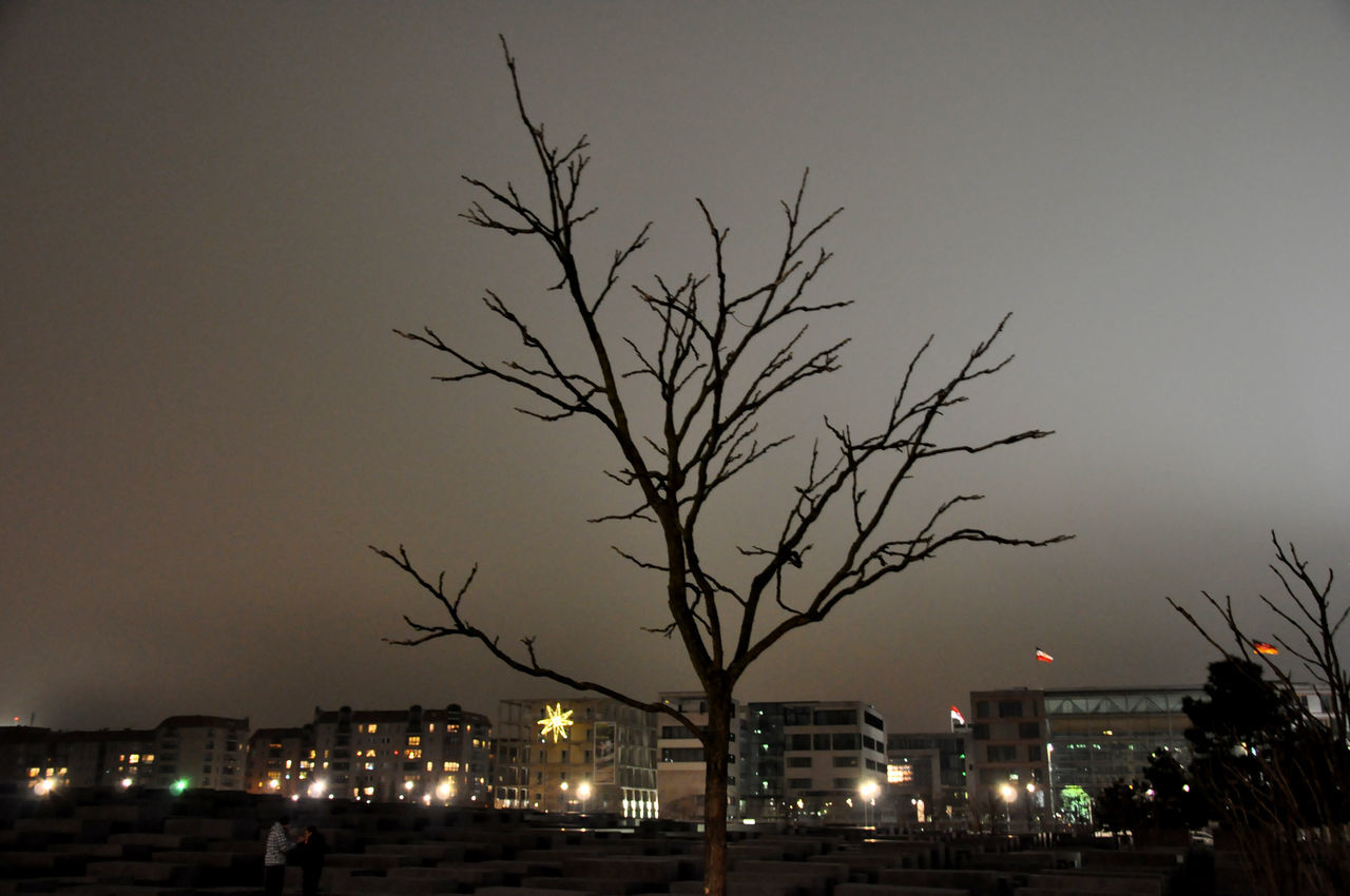 night, illuminated, architecture, built structure, building exterior, bare tree, city, sky, tree, no people, outdoors, branch, nature