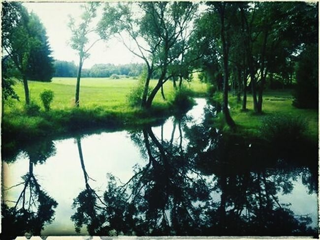 EyeEm Nature Lover Water_collection Water Reflections Popular Photos
