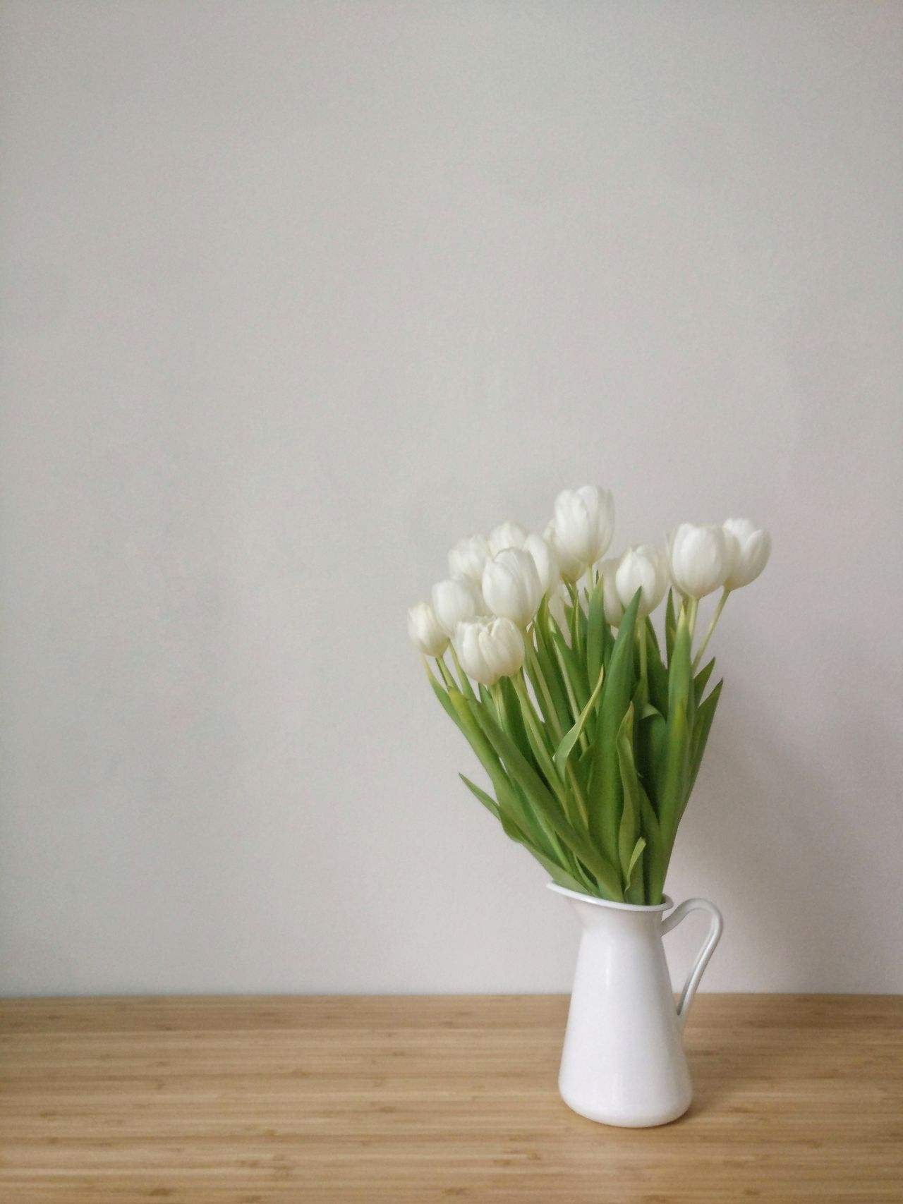 White Flower Vase Table White Color Freshness Indoors  Studio Shot Bunch Of Flowers No People Plant Nature Domestic Room Bouquet Flower Head Flower Arrangement Day