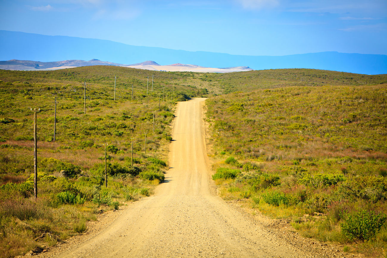 Gravel Road near Cape Town South Africa Beauty In Nature Day Distance Empty Empty Road Grass Gravel Road Landscape Mountain Nature No People Outdoors Road Scenics Sky South Africa The Way Forward Tranquil Scene Tree Western Cape