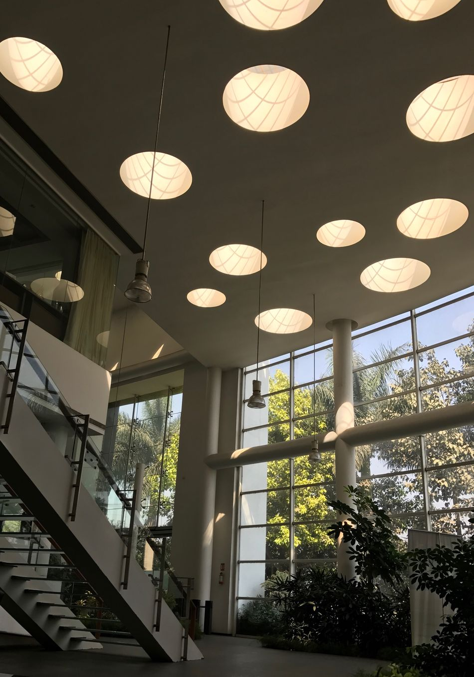 The City Light Office Office Building Architecture Indoors  No People Tree Sunlight ☀ Sunlight, Shades And Shadows EyeEmNewHere Indoor Hanginglights Ceiling Design Ceiling Architecture Ceiling Lighting Ceiling Window