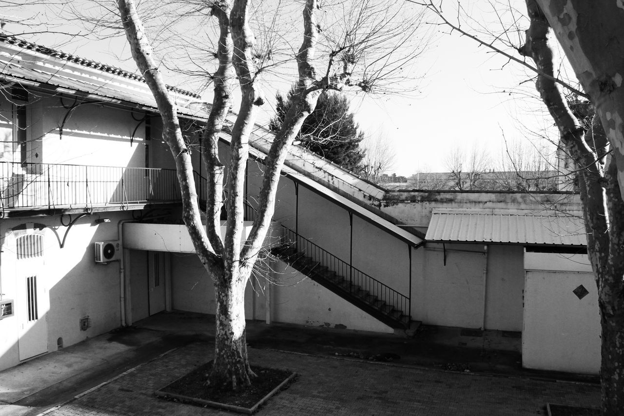 building exterior, architecture, built structure, house, tree, residential building, bare tree, branch, no people, outdoors, roof, day, tree trunk, nature, tiled roof, sky