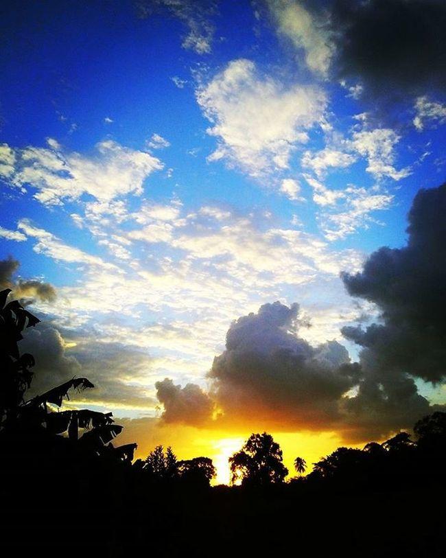 """""""Una noche senté a la belleza sobre mis rodillas —Y la encontré amarga—. Y la injurié."""" Arthur Rimbaud ArthurRimbaud AsíVemosElCielo Atardecer PostalTabasqueña SienpreHayQueMirarAlCielo CloudsBlackAndWhite SkyIsBlueAndGolden Lighandshadow"""
