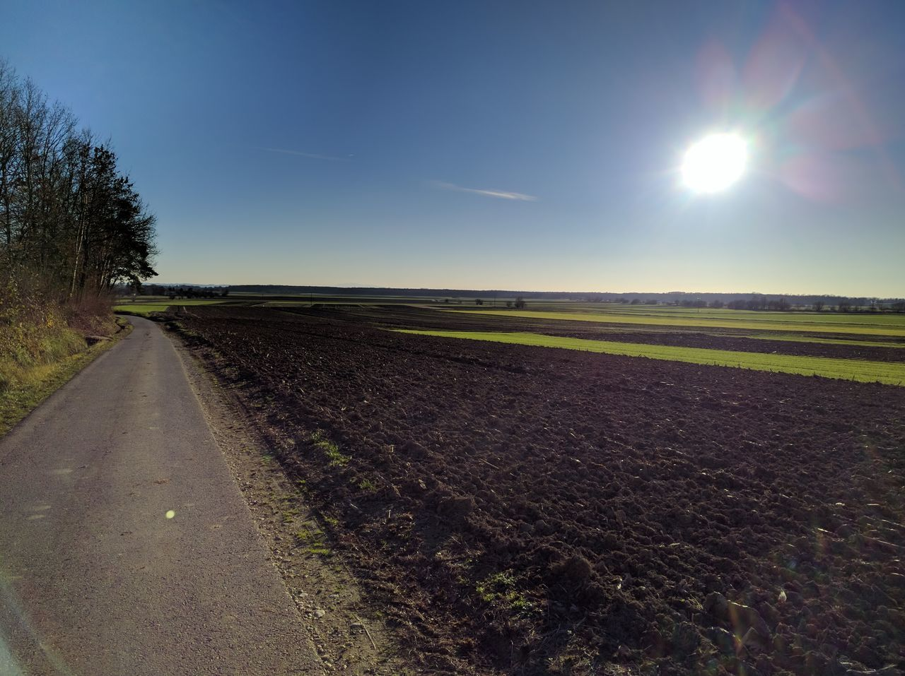 One Road Sun Clear Sky Rural Scene Landscape Nature No People Day Fall Outdoors Road To Peace Plowed Field