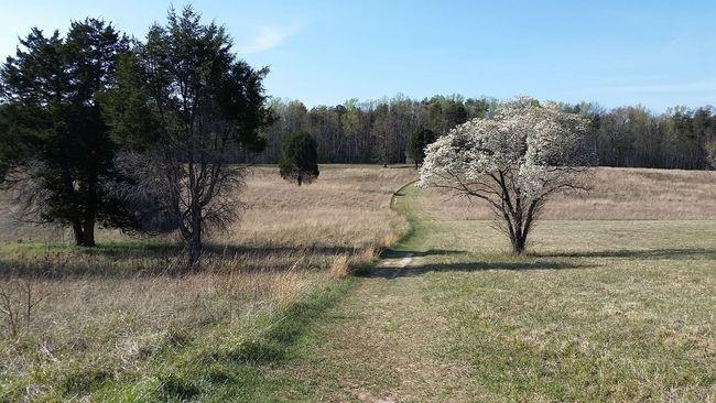 Spotsylvania, Va Battlefield