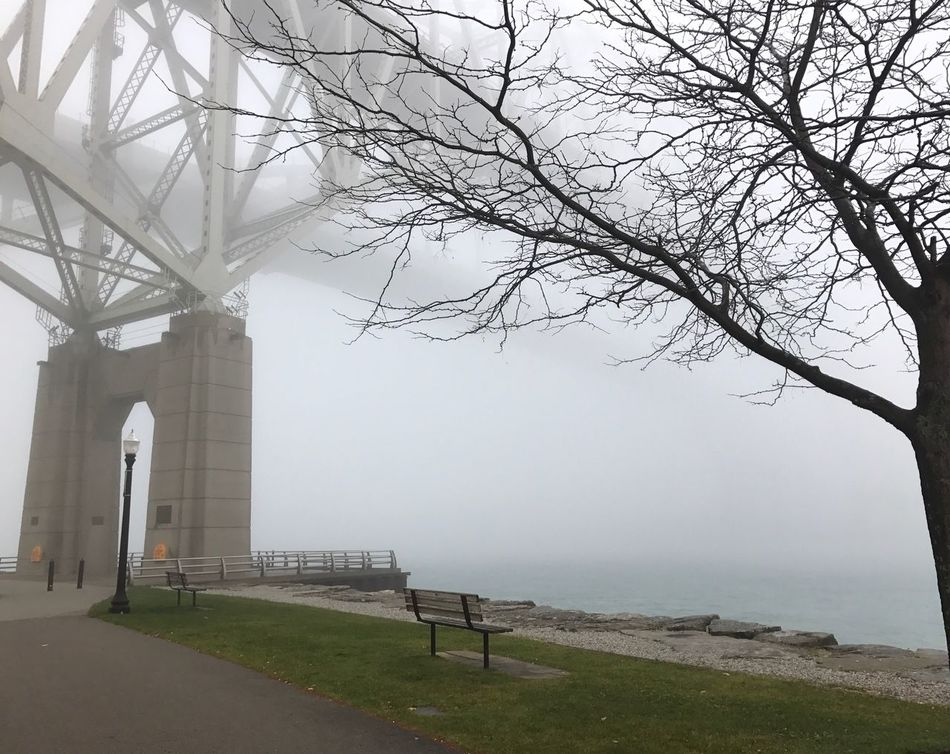 Bluewaterbridge Fog Foggy Foggy Day Foggy Morning Blue Water Blue Water Bridge Tree Outdoors Nature Built Structure Water Bare Tree Scenics No People Sarnia Sarnia, Ontario Ontario Ontario, Canada Ontario In The Fall