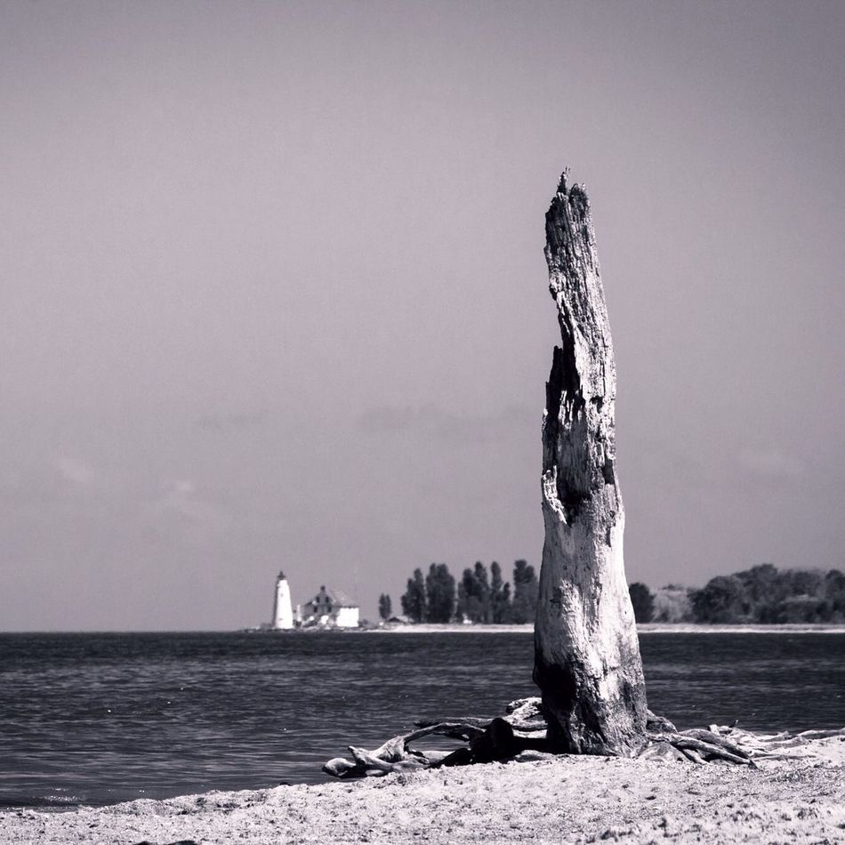 Cove Point Lighthouse from Calvert Cliffs,MD. Blackandwhite Landscape Lighthouse Chesapeake Bay