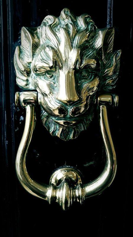 Brass Knocker Lion Polished Brasso Reflection Door Knock Knock Old Fashioned