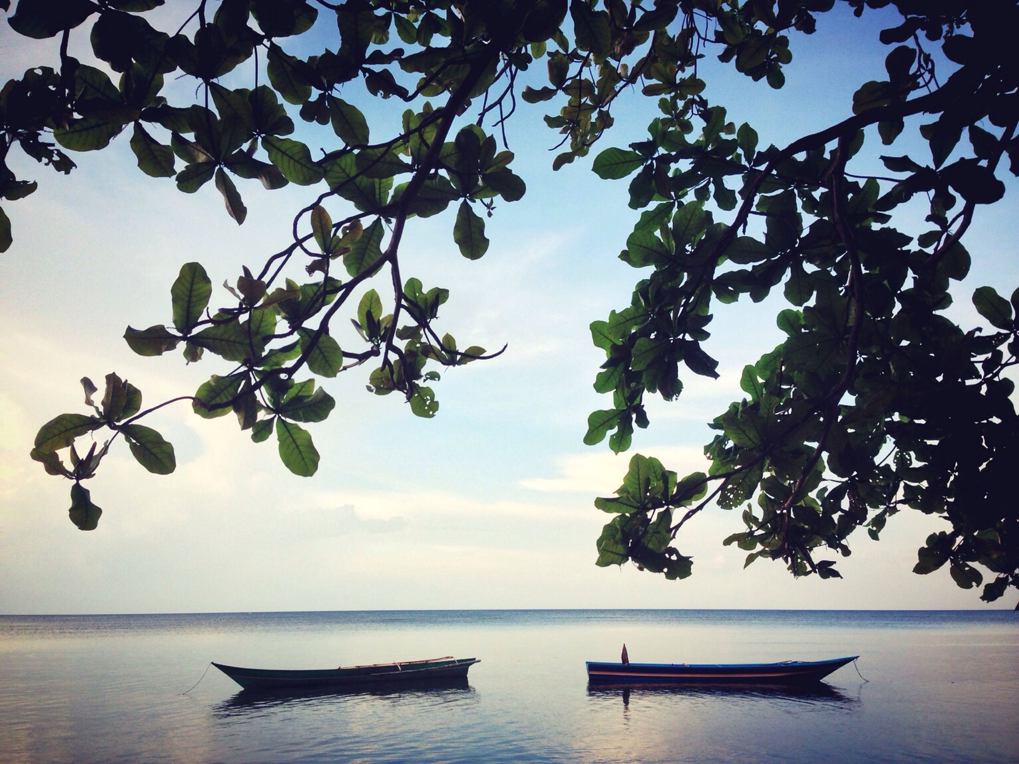 water, nautical vessel, boat, mode of transport, sky, transportation, sea, tree, tranquility, nature, moored, tranquil scene, horizon over water, scenics, beauty in nature, waterfront, silhouette, lake, reflection, branch