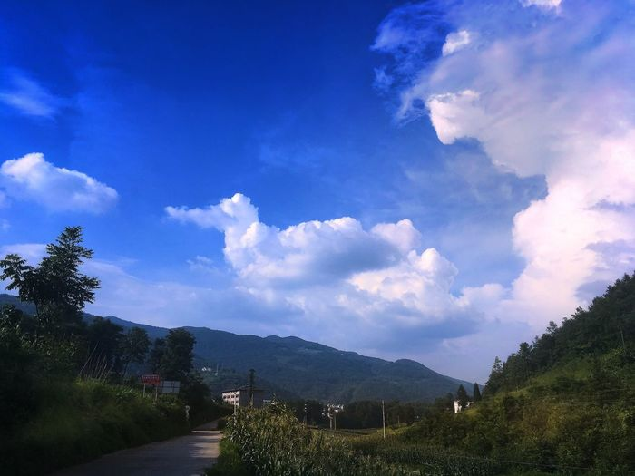 Sky Cloud - Sky Beauty In Nature Mountain Scenics Nature Tranquil Scene Tree Tranquility No People Outdoors Day Landscape Blue Mountain Range Road