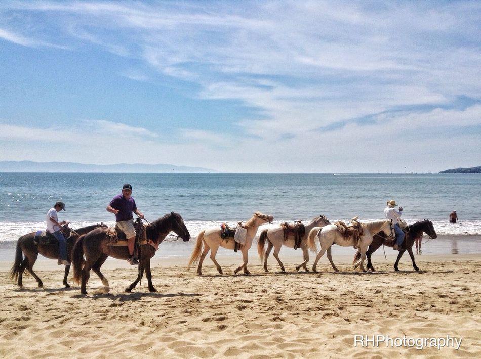 Want a ride? EyeEm Best Shots - My World Mexico Bucerius EyeEm Best Shots - Landscape