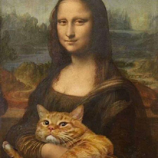 Monnalisa Cat Kedi Meaw