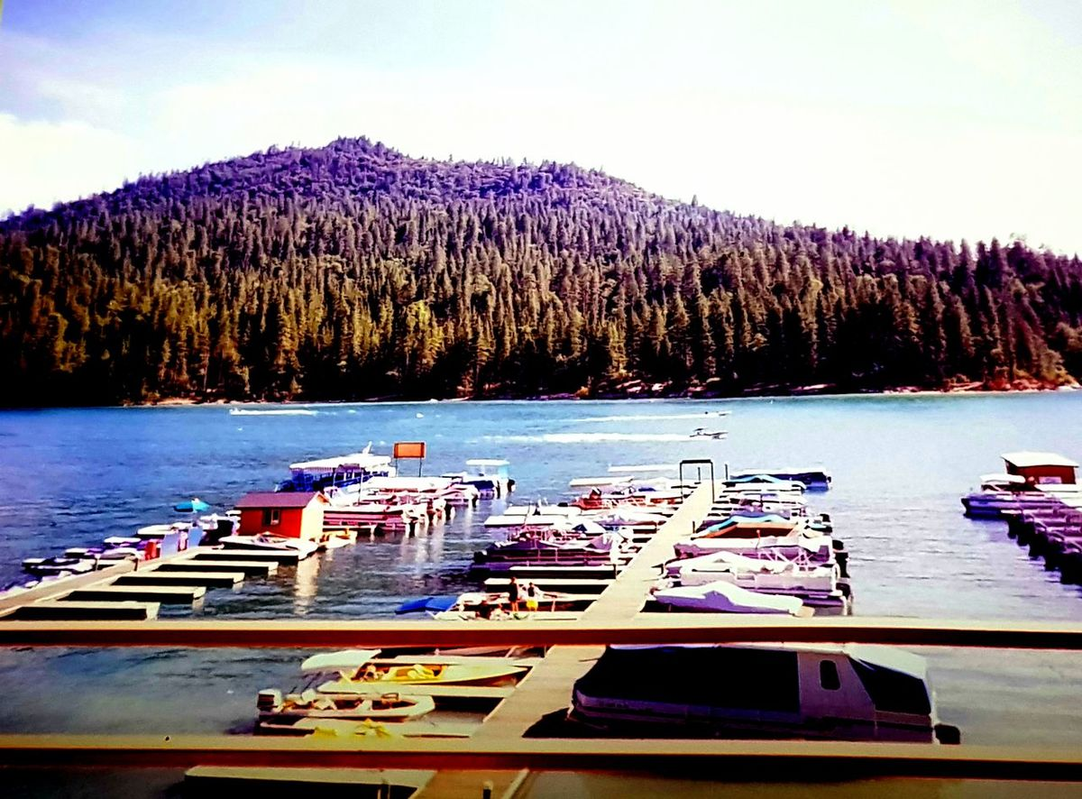 BASS LAKE. CALIFORNIA🌟 Bass Lake, California United States Of America United States My Travels America Boats My Life Trees Water California Bass Lake Landscape Forrest Holiday Travel Landscape Nautical Vessel Transportation Water Lake Nature Outdoors Day Beauty In Nature Boat Moored Scenics Tree Sky
