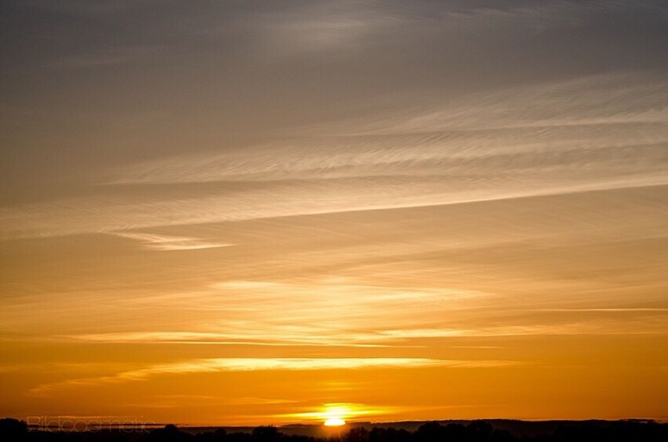 Sunset Nature SunSreen Orange Color Scenics Tranquility Beauty In Nature Tranquil Scene Sky Idyllic Silhouette Cloud - Sky No People Outdoors Yellow Horizon Over Water Day Love Blooming GERMANY🇩🇪DEUTSCHERLAND@ Freshness Awesome_shots Landscape Togheterness