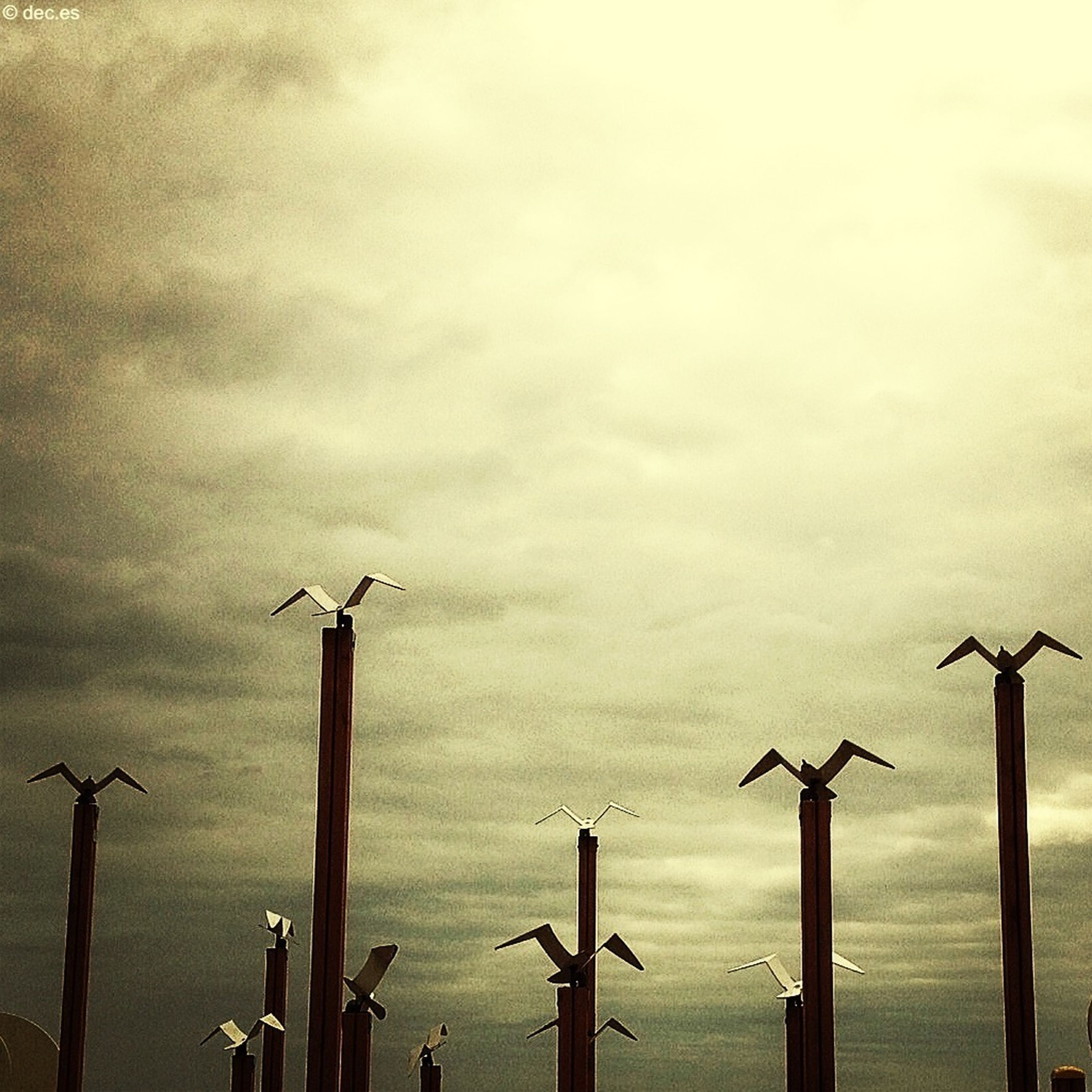 alternative energy, wind turbine, renewable energy, environmental conservation, wind power, bird, windmill, sky, fuel and power generation, wooden post, cloud - sky, low angle view, nature, no people, outdoors, cloudy, animals in the wild, day, wildlife, animal themes