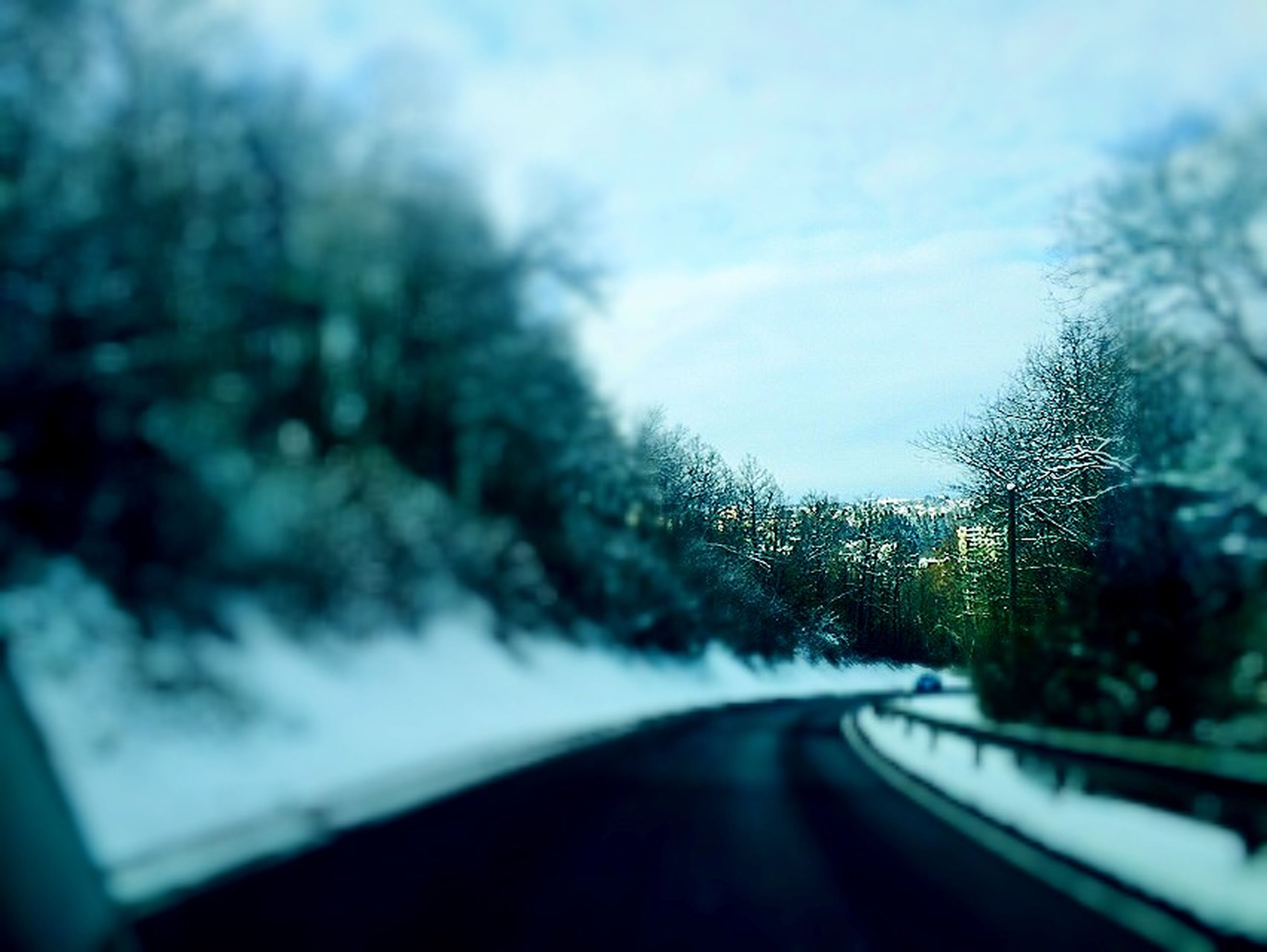 transportation, road, tree, sky, the way forward, diminishing perspective, nature, weather, vanishing point, road marking, car, cloud - sky, beauty in nature, windshield, no people, growth, outdoors, street, glass - material, transparent