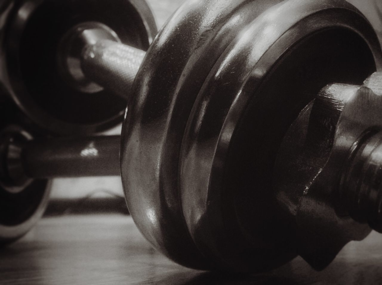 Close-up Day Dumbbells Exercises  Gym Healthy Lifestyle Horizontal Indoors  Iron Macro No People Sport Finding New Frontiers