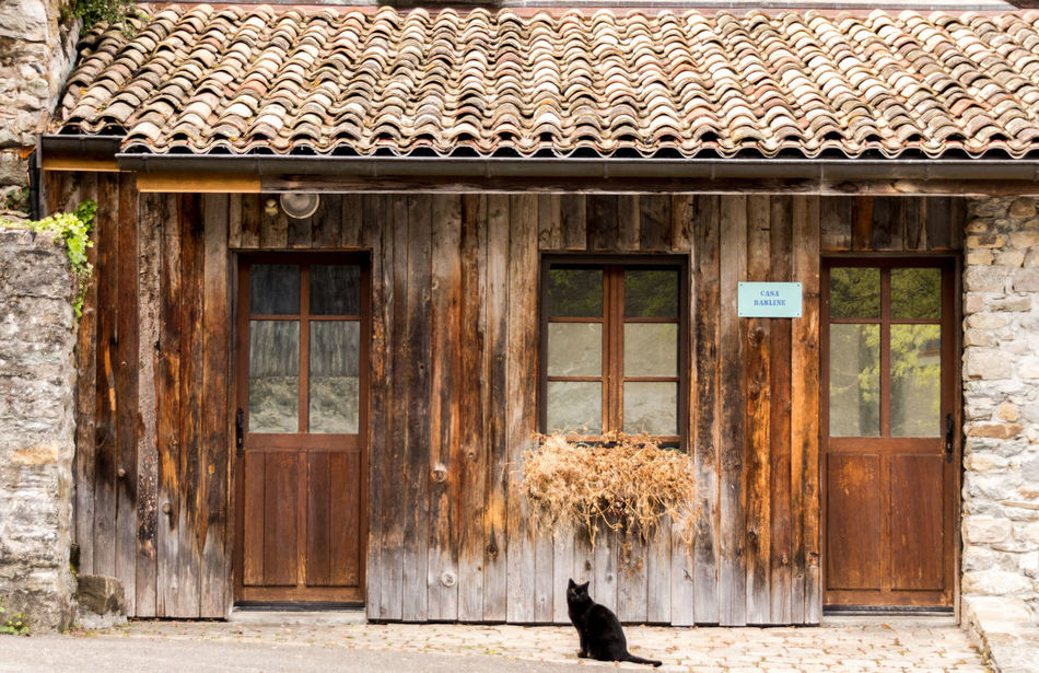 Animal Themes Architecture BLackCat Building Exterior Built Structure Cat Day Domestic Animals House Mammal Nature No People One Animal Outdoors Pets Window Wood - Material