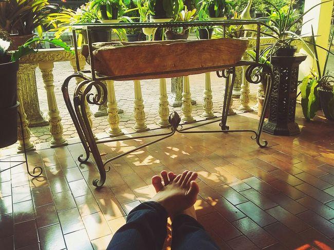 My Best Photo 2015 Eye4photography  Good Morning World! My Feets Getting Inspired Untold Stories Getting Creative Urban Lifestyle Urban Gardening Dakon Learn & Shoot: Single Light Source