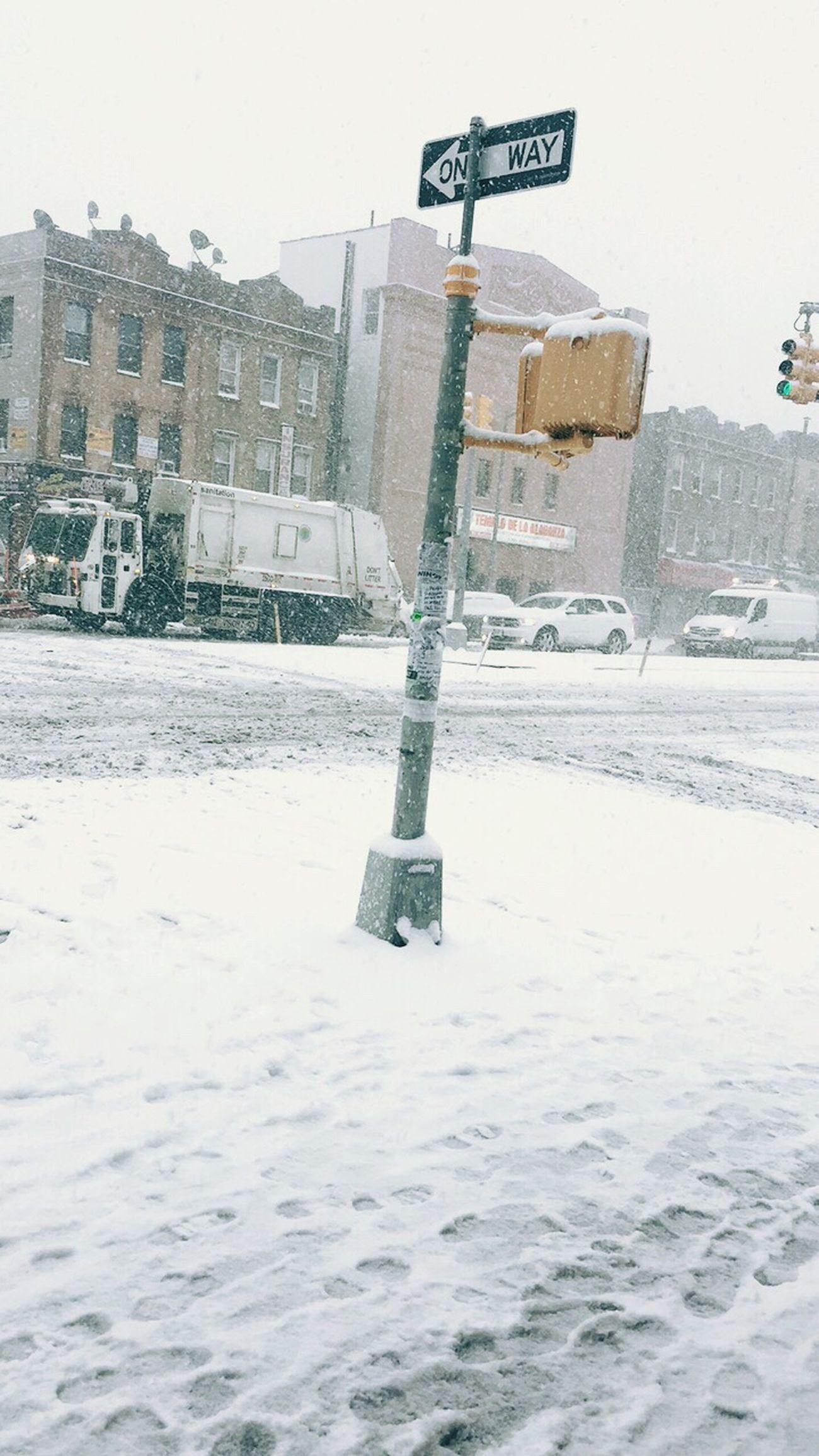 SnowDay 🌨