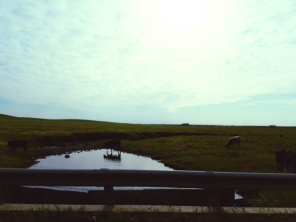 Love Hanging Out Taking Photos On The Road Landscape_Collection Lovely Weather Hello World My Point Of View