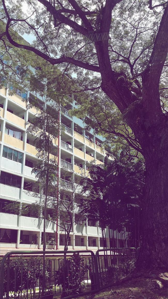 Lived here for the first 7 months of my life Commonwealth Architecture Singapore