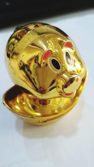 Golden happy pig Charms Happypig Golden