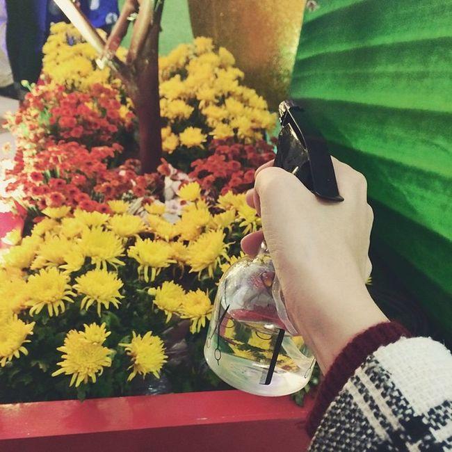 Tưới hoa 🌸🌻🌺🌼🌷🌹💐 Lao động là vinh quang ✨👏😉 Flower Flowerslovers Vietnam Lunarnewyear Tết Azn Hanoi Winter