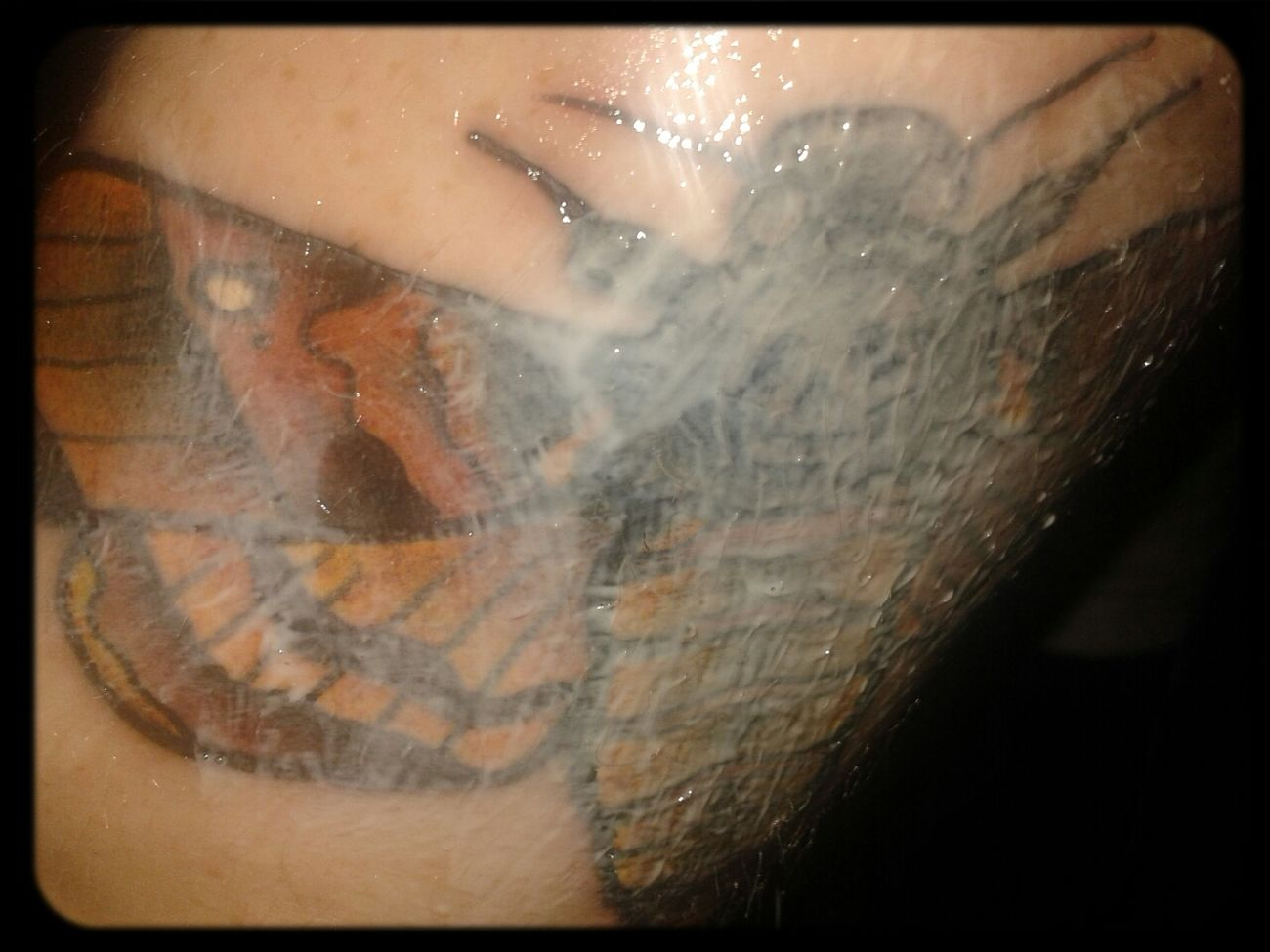 healing time Tattoo Tattooed Deathmoth Healing